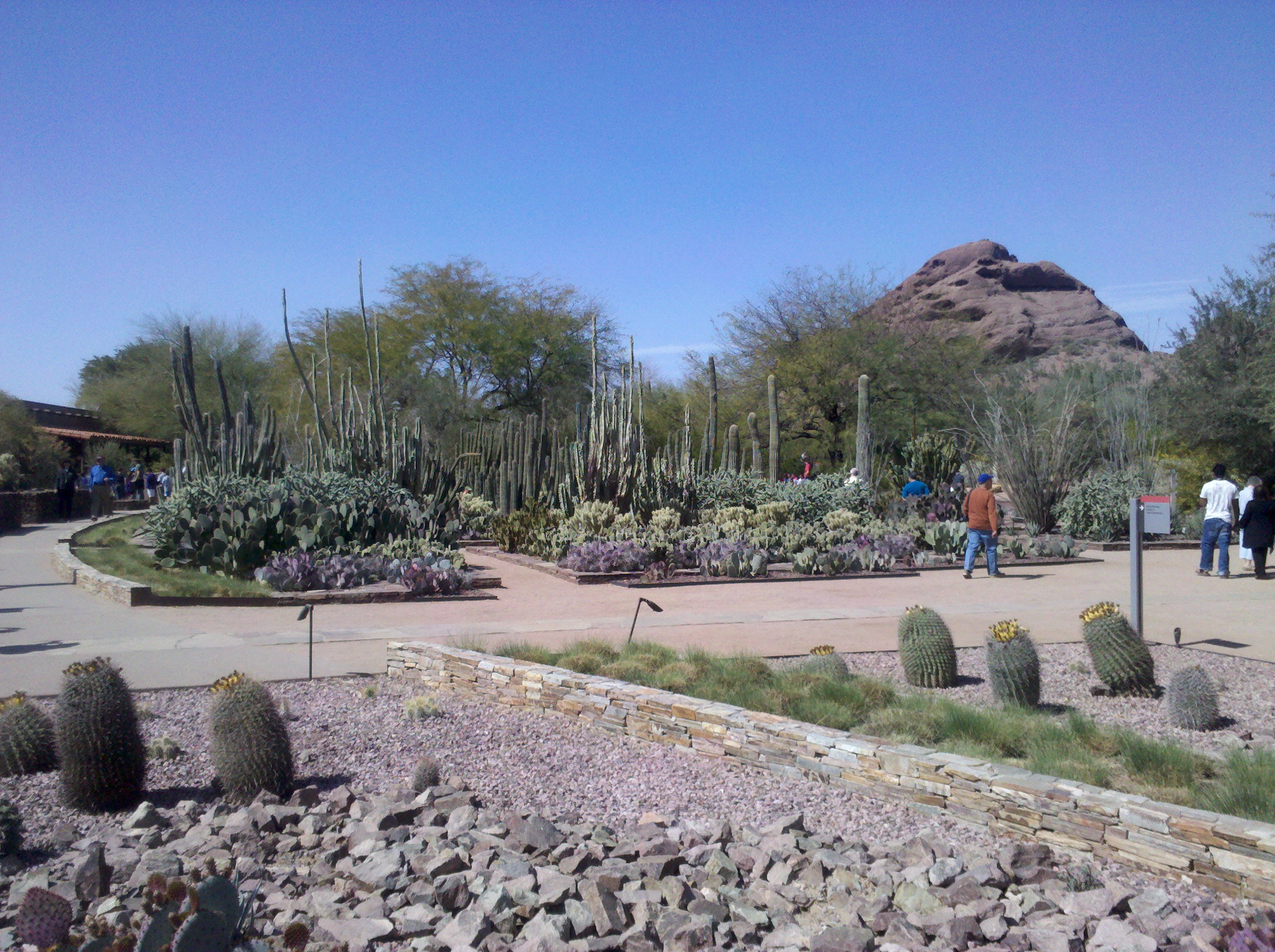 Rest relaxation and fun in phoenix and glendale az the for The glendale