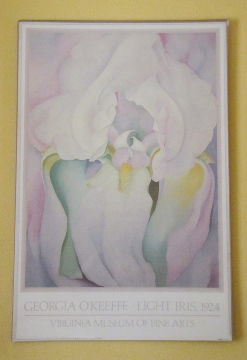 "Light Iris (Georgia O'Keeffe) 22""x28"" Black Range Lodge, Kingston, NM"