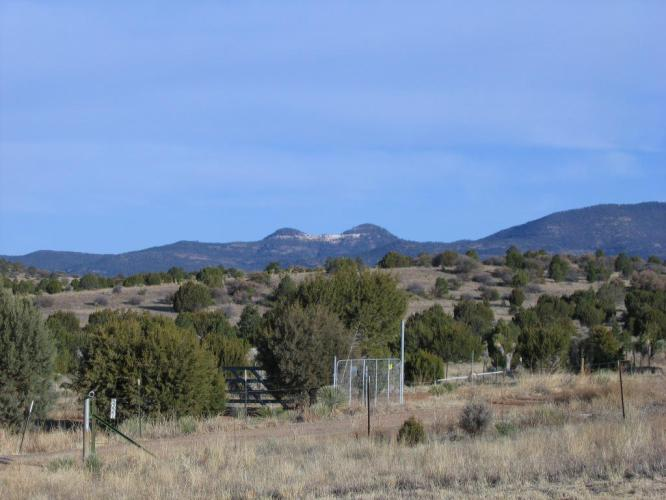 A few miles from Silver City. This might be The Twin Sisters.