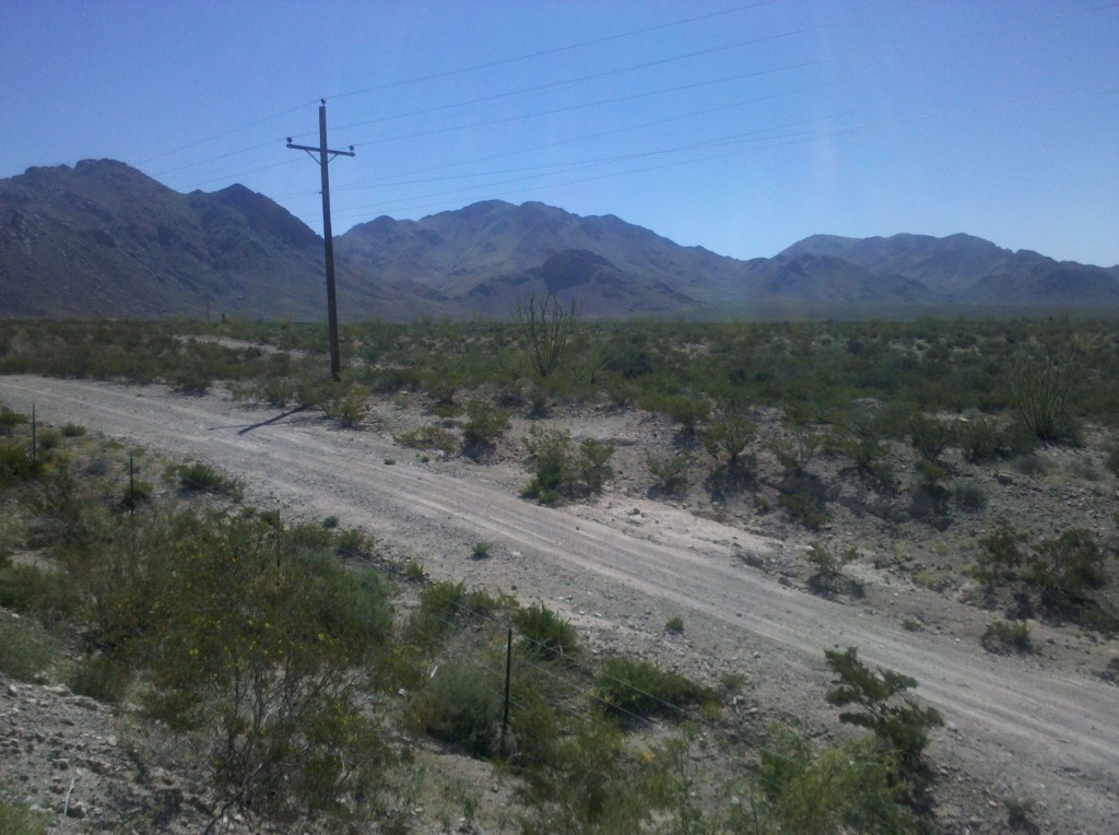 Cacti and mountains at mile marker 95 on I-10.