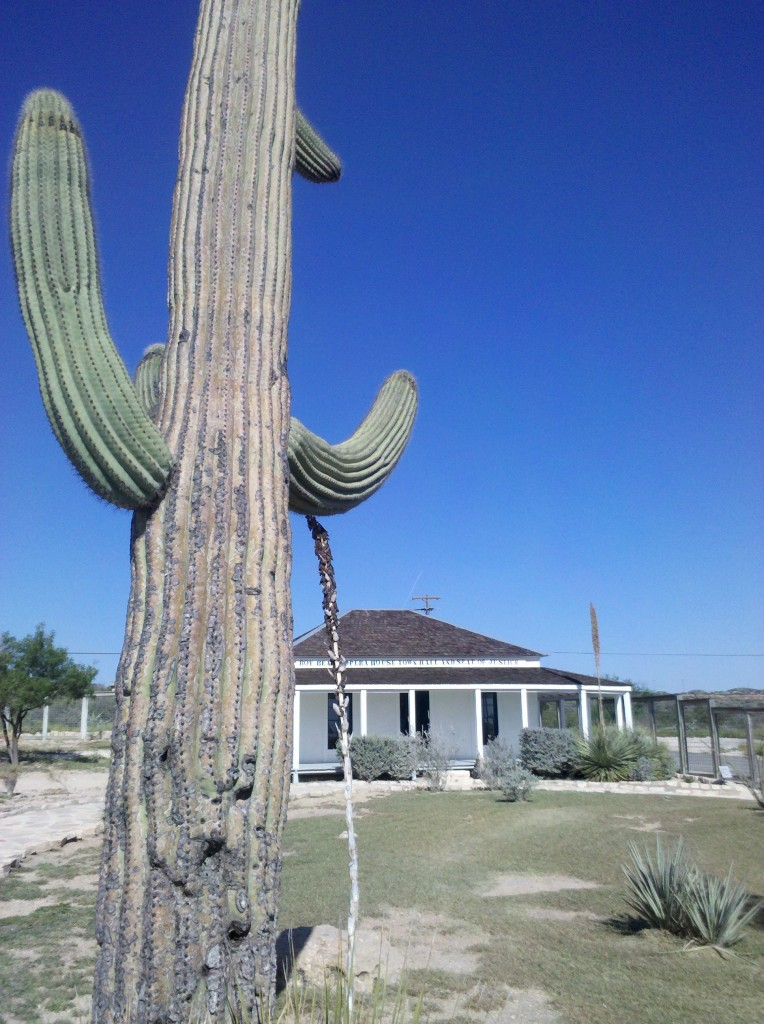 Saguaro cactus in Judge Roy Bean Visitor Center, Langtry, TX.  The only saguaro cactus we have seen on Leg 3 have been at Langtry.