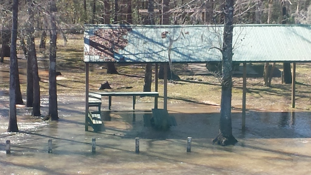 Picnic area underwater at the Choctawhatchee River on US 90.