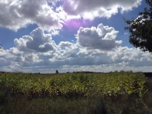 A sample of the clouds we enjoyed at our lunch break.