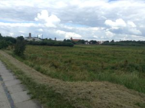 A view of the RibeOur skyline/church steeples from miles outside Ribe.
